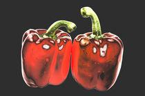 Paprika! von Dan Kollmann