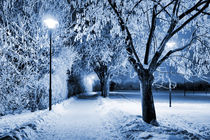 Winterkalt von Dan Kollmann