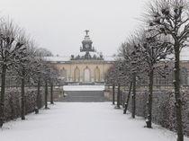 Sanssouci im Schnee von loquito