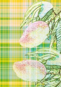 Mango gelb und grün by Valérie Salvetti