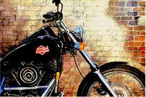 Harley Davidson by wolf wanninger