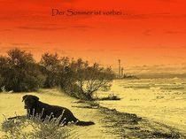 Der Sommer ist vorbei von Susanne Surup