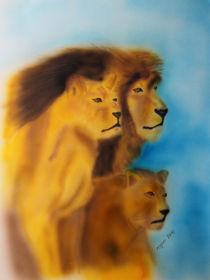 Die Löwen Familie - The Lion von ropo13