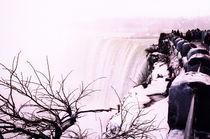 Niagara Falls V by Ria den Breejen