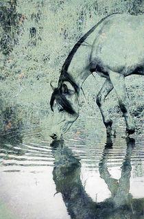 Spiegelbild by pahit