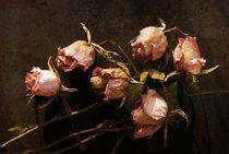 Vanitas 2, Rosen von pahit