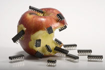 Bugs by Wolfgang Karg