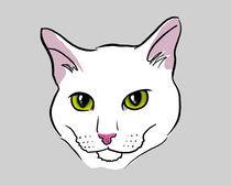 White Cat by Olga Hopfauf