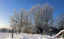 Winterlandschaft by jackness