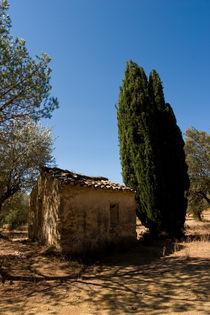 Shepherd's House von safaribears