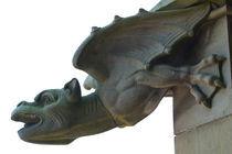 Gargoyle von safaribears