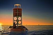 The sea-lion's sunbathe (Color Version) by Ahmed Kamal