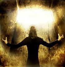 aus der Dunkelheit ins Licht von Rene Asmussen