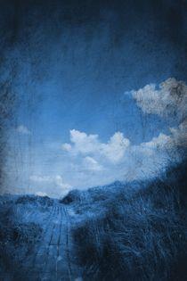 Am Ende des Weges von Andrea Meyer