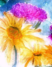 'Sommerblumen' von Sonja Angela Ziehr