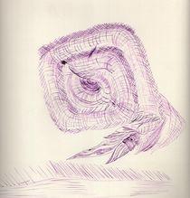 Nautilus by Oleg Kappes