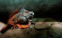 Jurassic Park  von Städtecollagen Lehmann