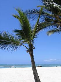 Palmbeach  von Städtecollagen Lehmann