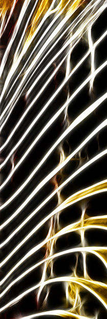 Firework - 2 von Städtecollagen Lehmann