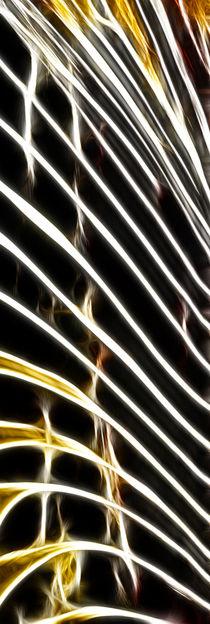 Firework - 3 von Städtecollagen Lehmann