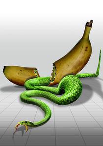MambaEatsBanana von Peter Holland
