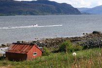 Rote Hütte am steinigen Ufer eines Fjords in Norwe von fotodil