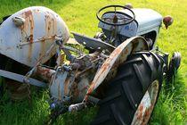 Traktor Oldtimer auf einer Wiese von fotodil