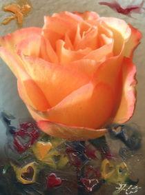 La rosa amor I von aw-anja-bronner-art
