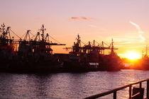 Hamburger Hafen by Sabine Zankl