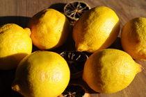 Zitronen von Sabine Zankl