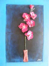 orchidee von andreas walz