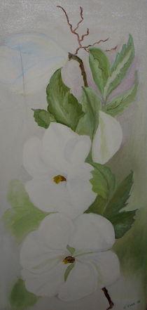 Apfelbaumblüte von ERIKA FUSS