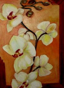 Orchideen by ERIKA FUSS