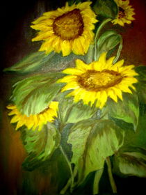 Sonnenblumen by ERIKA FUSS