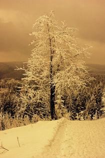 Winterlandschaft by Tino Retzlaff