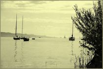 Bodensee by Tino Retzlaff