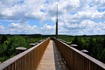 Aussichtsplattform by Robert Resinger