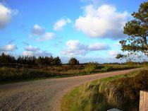 Landweg von Ute Bauduin