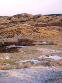 Dünen im Winter by Ute Bauduin