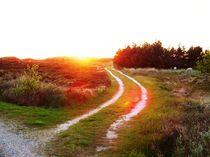 Landweg  by Ute Bauduin