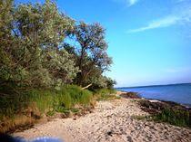 Ostsee von Ute Bauduin