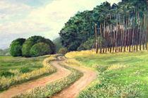 Wiesenweg von Holger Hausmann