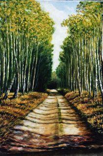 Birkenwald im Herbst von Holger Hausmann