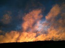 Himmel in Flammen von Heike Schuster