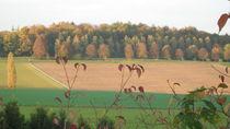 Wald und Feld by Heike Schuster