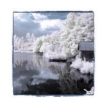 Småland II by David Helfer