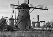 Windmühlen by Markus Schepers-Diekmann