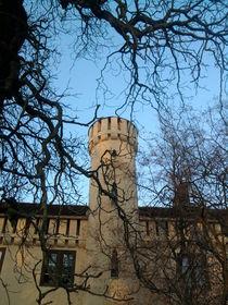 Schloss Petzow by Rainer Theobald