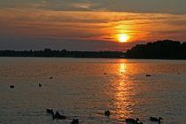 Sonnenuntergang von Erwin Maier