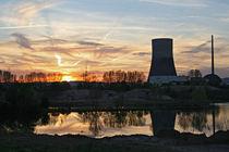 Atomkraftwerk versus Natur by Erwin Maier